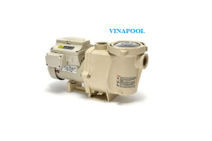 VianPool IntelliFlo VF pumps