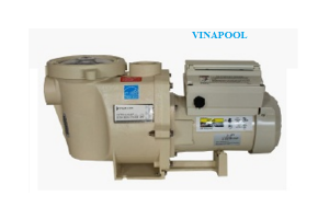 VianPool IntelliFlo VS + SVRS pump