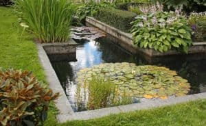 VianPool professional-pond-2