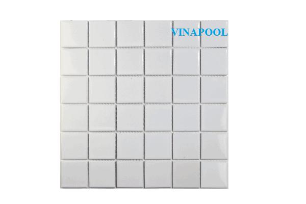 VianPool 48tn101-2
