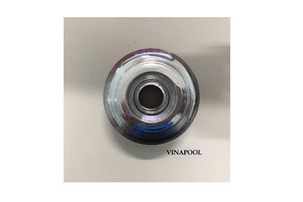VianPool mat-tra-nuoc-inox