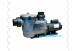 VianPool Hydrostorm Pump  1HP