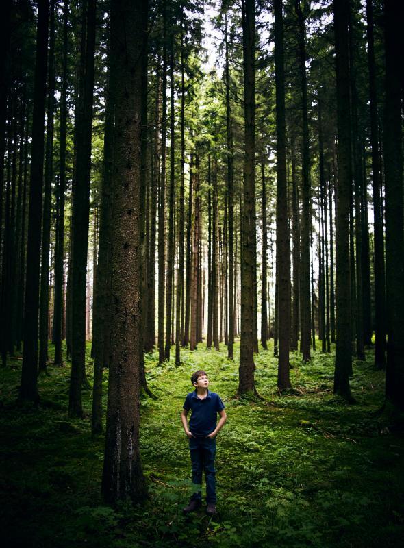 VianPool german-child-million-trees-adapt-590-1