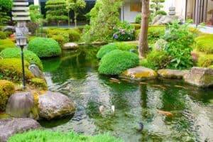 VianPool japanese-pond-2