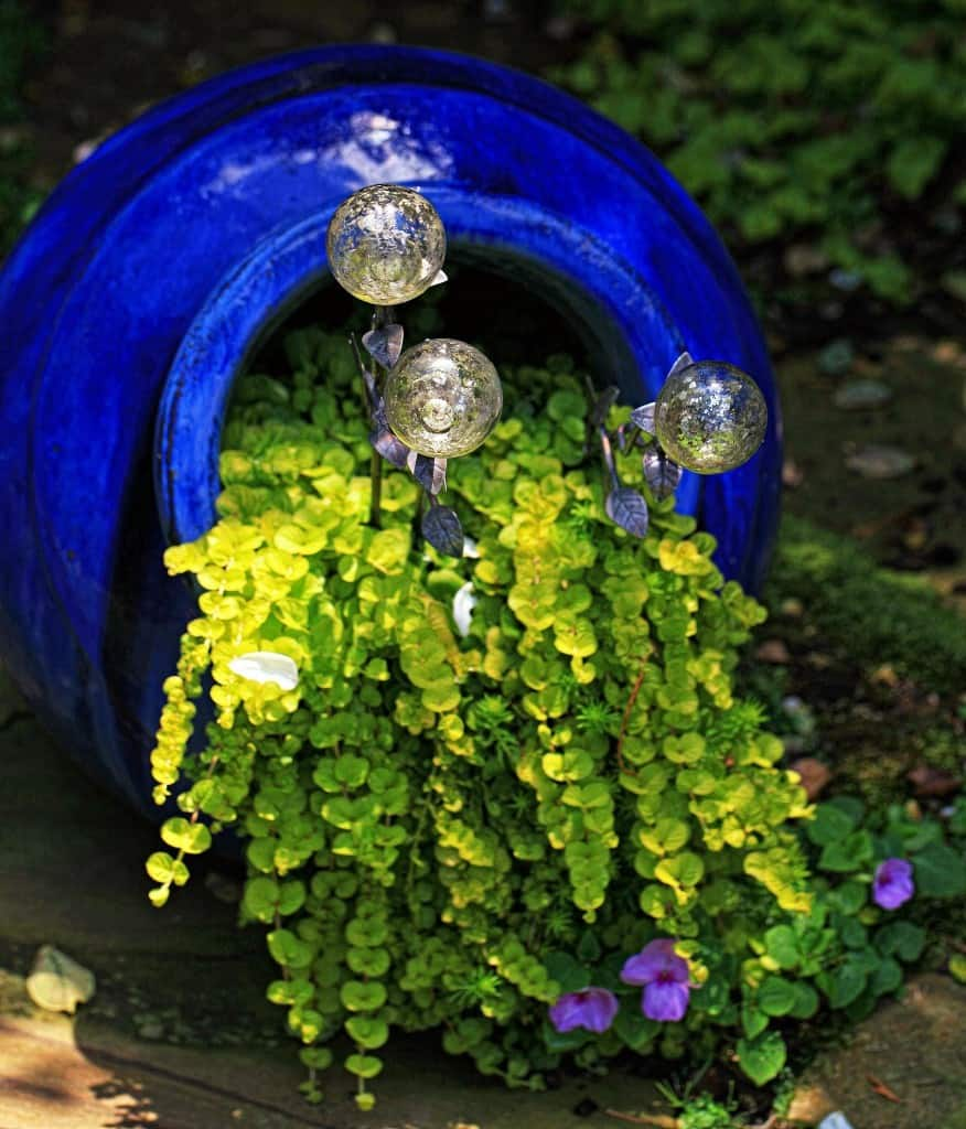 VianPool spilling-flower-pot-10