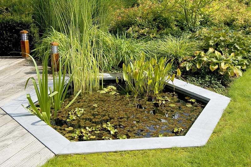 VianPool deck-pond