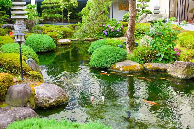 VianPool japanese-pond