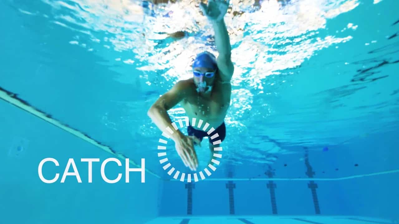 VianPool zoggs-freestyle-front-crawl-how-to-swim-this-stroke-efficiently-youtube