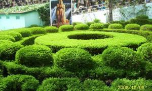VianPool garden