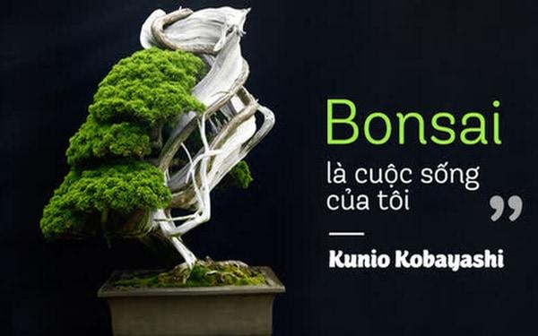 VianPool Top 10 cây Bonsai đẹp nhất thế giới