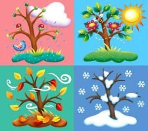 VianPool seasons