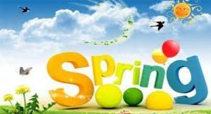 VianPool spring1