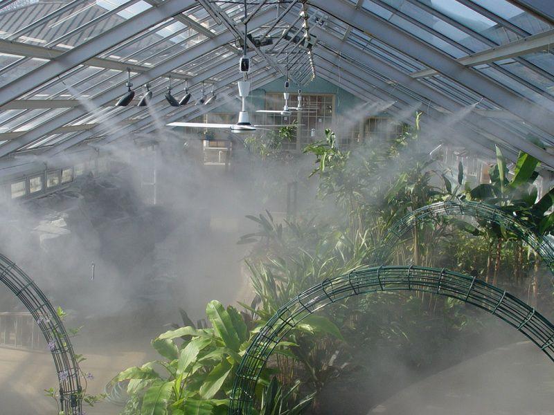 Giá bán hệ thống tưới phun sương tưới cây cảnh, hoa lan tự động