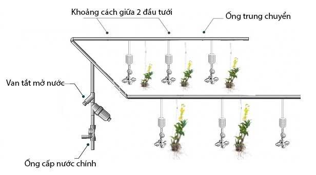 VianPool he-thong-phun-suong-tuoi-cay-giup-lam-mat-cay-moi-truong-maka