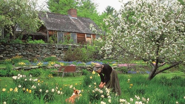 Bỏ phố về quê, bà cụ U100 biến mảnh đất quê thành căn nhà vườn trị giá 2 triệu USD, tận hưởng cuộc sống đẹp như tranh vẽ - Ảnh 2.