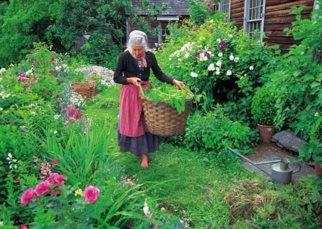 Bỏ phố về quê, bà cụ U100 biến mảnh đất quê thành căn nhà vườn trị giá 2 triệu USD, tận hưởng cuộc sống đẹp như tranh vẽ - Ảnh 4.