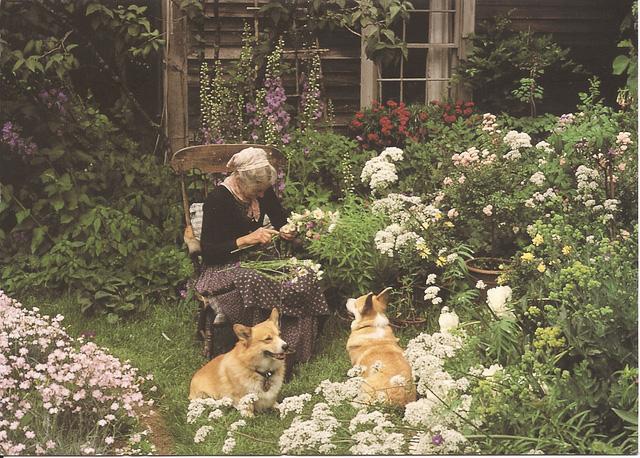 Bỏ phố về quê, bà cụ U100 biến mảnh đất quê thành căn nhà vườn trị giá 2 triệu USD, tận hưởng cuộc sống đẹp như tranh vẽ - Ảnh 13.